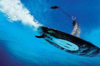 Elektriske surfboards – det helt nye? Blæs på om det blæser!